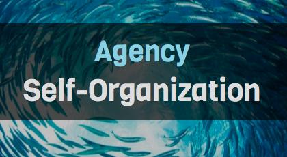 Self-Organization Within Digital Agency Teams