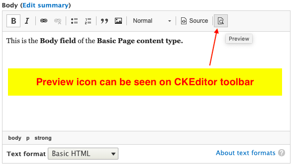 Preview icon can be seen on CKEditor toolbar