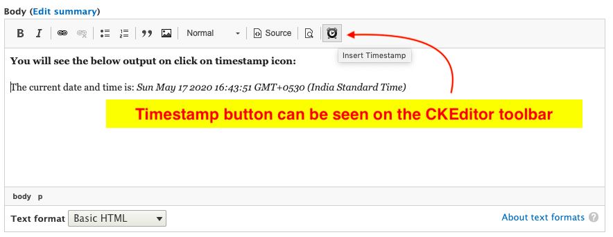 Timestamp button can be seen on the CKEditor toolbar