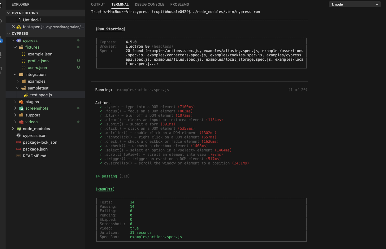 executing the command in the Visual Studio code terminal