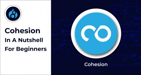 Cohesion-In-A-Nutshell-For-Beginners